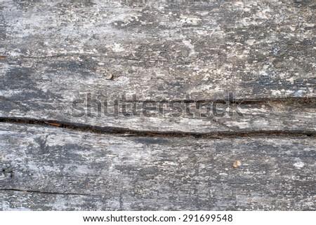 Weathered wood background - stock photo