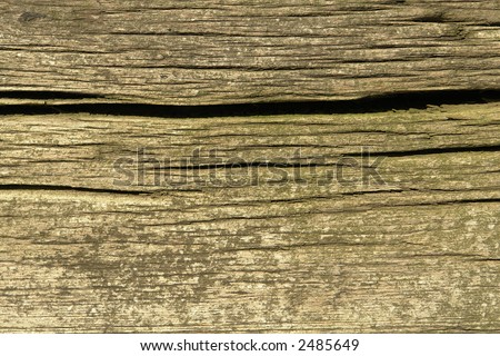 Weathered wood board. - stock photo