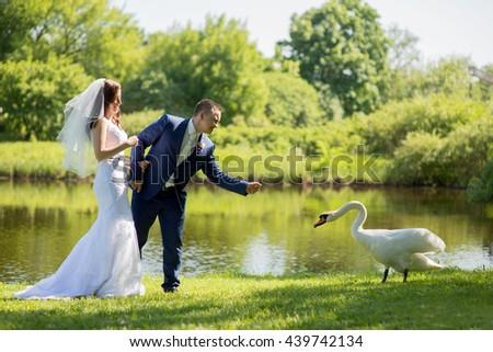 Wedding.  - stock photo