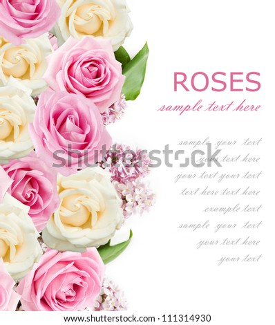 Wedding background with pink and cream roses and lilac flowers isolated on white with sample text - stock photo