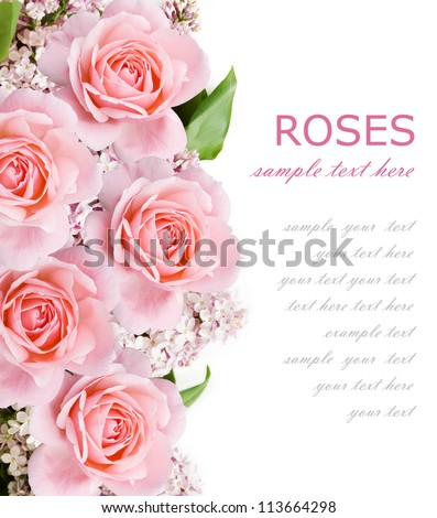 Wedding background with pink roses and lilac flowers isolated on white with sample text - stock photo