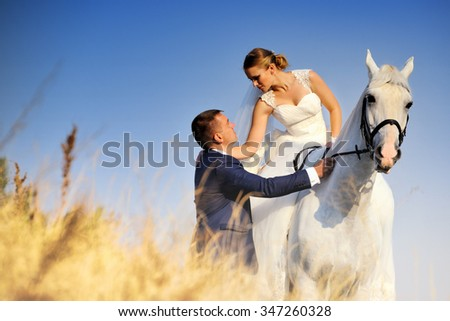 Wedding. Bride and groom with white horse in field - stock photo