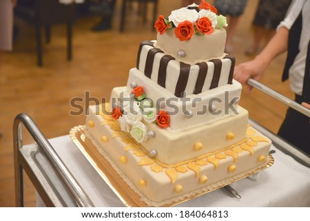Wedding cake during the wedding party in natural light