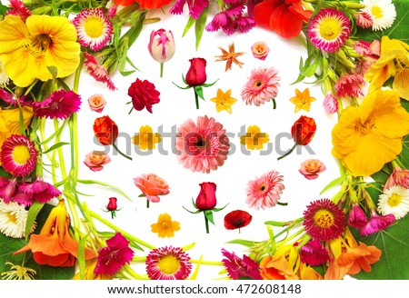 Wedding card. The flat layout, top view. Flowers of nasturtium, carnations, rose, daisy, tulip, gerbera, poppy, lilies and marguerites isolated on a white background