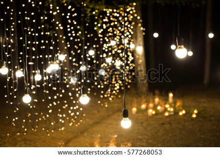 Wedding Ceremony Evening With Candles And Lamps In The Coniferous Pine Forest