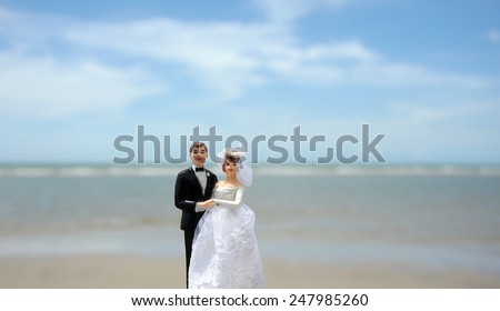 wedding couple doll by the sea , Valentine