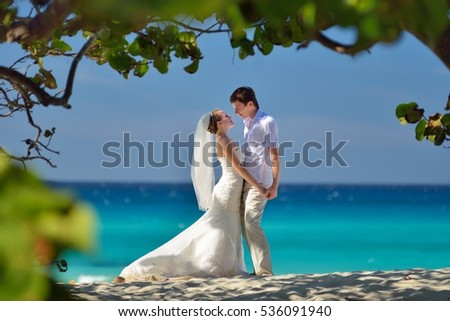 Wedding couple is standing on the coast of the caribbean sea