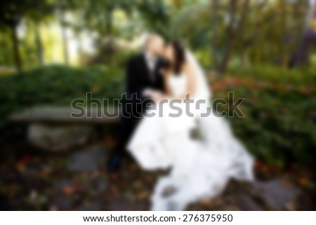 wedding couple kissing in the park ,after wedding walk,romantic and love sign background - stock photo