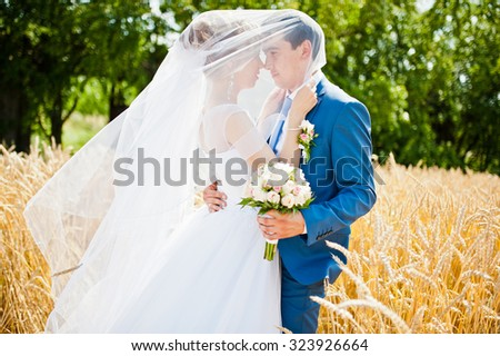 wedding couple on sunny day on wheat - stock photo