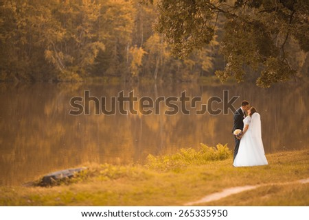 wedding couple walk in the wood near the lake - stock photo