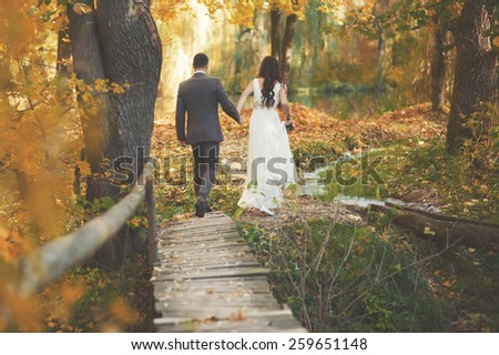 Wedding couple walking together in magic forest.  Newlyweds in love.  - stock photo
