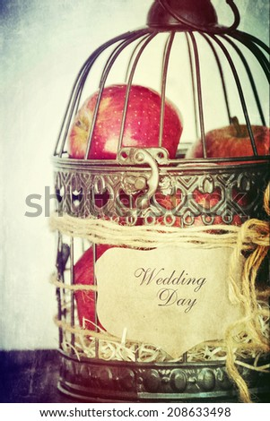 Wedding decoration and birdcage - stock photo