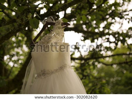 Wedding dress hanging on a tree - stock photo