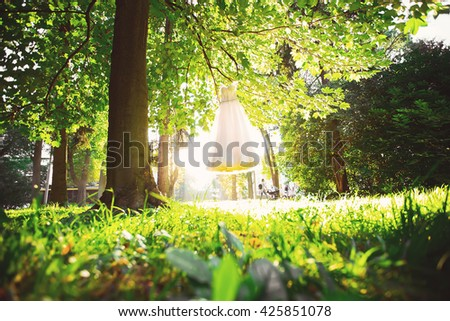 wedding dress on a tree in the park