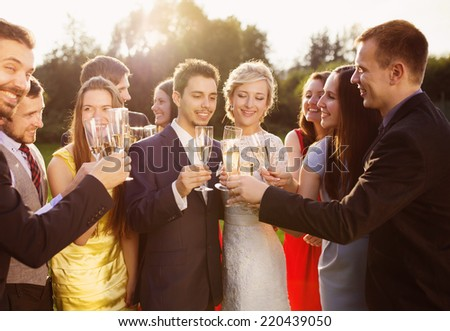 Wedding guests clinking glasses with the newlyweds at the wedding reception outside - stock photo