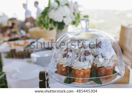Wedding reception outdoor catering in rustic style served with wooden decorations, sweet part of banquet, cupcakes