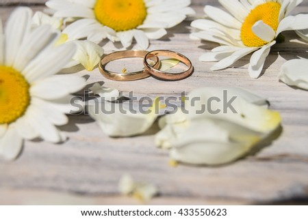 wedding rings and daisy on colored board