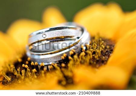 wedding rings flower - stock photo