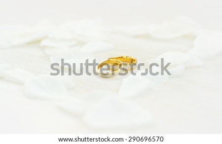 Wedding rings in heart of white petals/Wedding rings/Wedding rings - stock photo