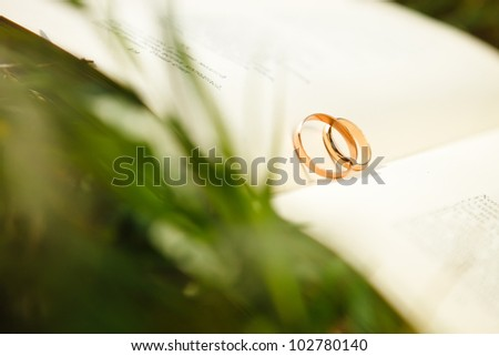 wedding rings in open book on the grass - stock photo