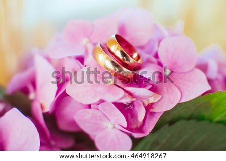 Wedding rings lie on the petals of hydrangea