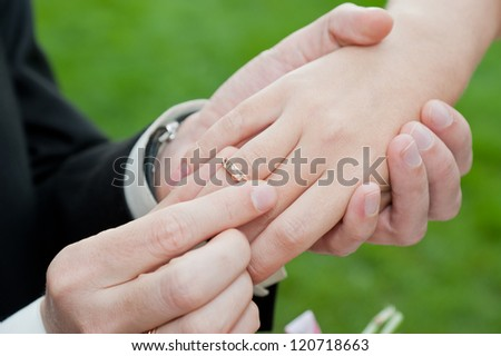 Wedding rings on the hands on the background of grass