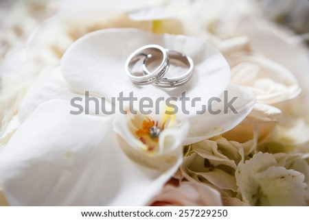 Wedding rings on the roses - stock photo
