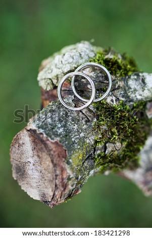 Wedding rings on wood - stock photo