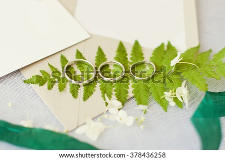 Wedding rings with wedding invitations and fern - stock photo