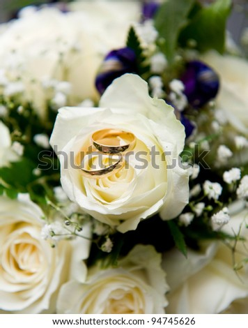 Wedding rings with white rose - stock photo