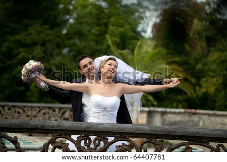wedding series - stock photo