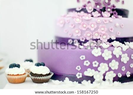 Wedding sweets, blueberry cake - stock photo