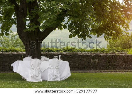 Wedding table set in the garden under the tree shade