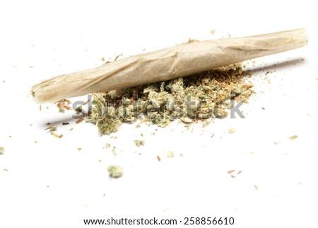 Weed - stock photo