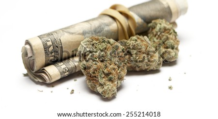 Weed, Cannabis and Marijuana Bud  - stock photo
