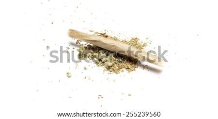 Weed, White Background  - stock photo