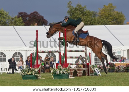WEEDON, UK - AUGUST 28: A rider competing in the main show jumping event in the large display arena successfully jumps a large fence at the Bucks County Show on August 28, 2014 in Weedon
