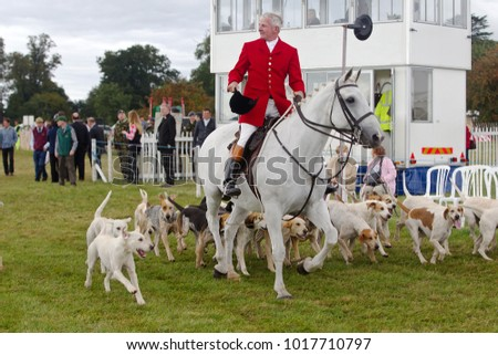 WEEDON, UK - AUGUST 28: Huntsmen parade their dog pack to the watching crowd before letting the public into the arena to see the dogs close up at the Bucks County Show on August 28, 2014 in Weedon.