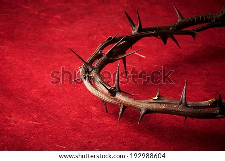 week of passion. Jesus Christ crown of thorns on red background - stock photo