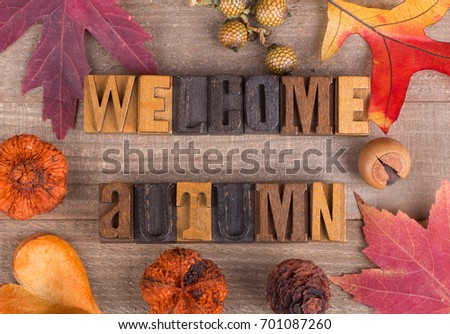 Welcome autumn lettering with fall decorations on a wood surface