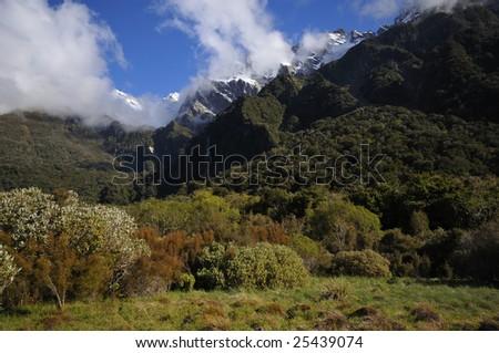 Welcome Flat and Sierra range, Copland Track, New Zealand - stock photo