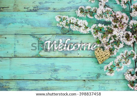 Welcome sign with wicker heart hanging by spring flowering tree branch on antique rustic mint green wood background; white blossoms border - stock photo