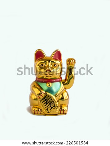 Welcoming cat  - stock photo