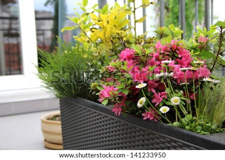 Well designed modern terrace with a lot of flowers - stock photo