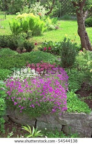 Well-groomed spring garden. - stock photo