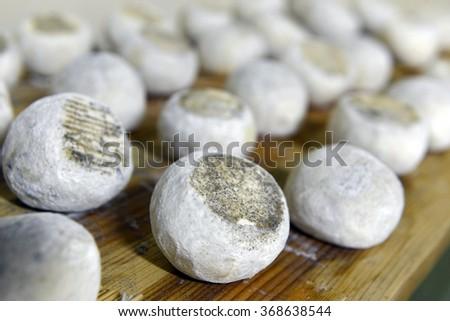 well ripened goat and ewe cheeses - stock photo