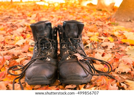 Well worn leather hiking boots in yellow orange colored autumn forest ready to go on a hike