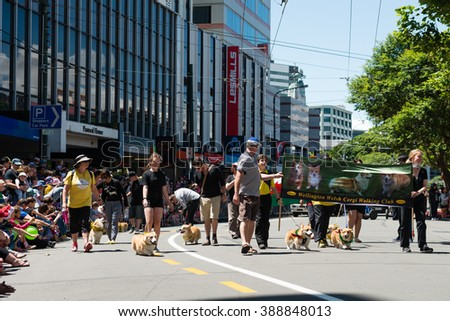 WELLINGTON, NEW ZEALAND - DECEMBER 13: Carnival groups and costumed characters, parade through the streets of Wellington during the Santa Parade on Sunday, December 13, 2015 in Wellington, New Zealand