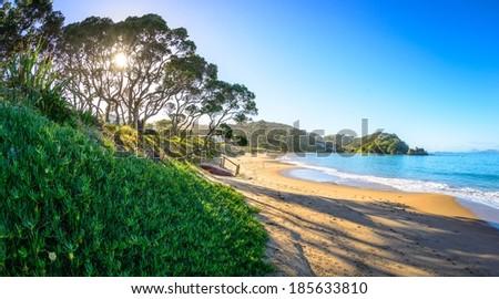 Wellington's Bay Sunrise, Tutukaka Coast - stock photo