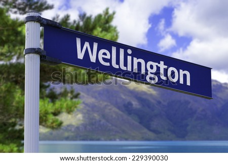 Wellington sign on a beautiful landscape background - stock photo